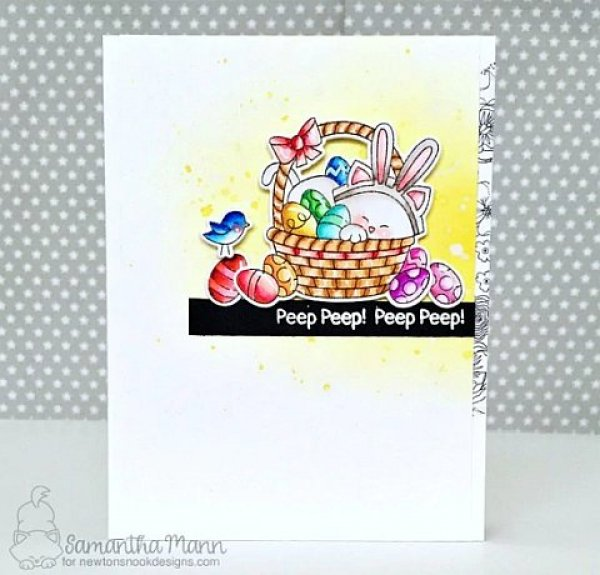NN1802S02_NewtonsEasterBasket_Clear_Stamps_Stempel_Newtons_Nook_project1