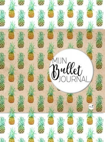 118735-2520-mus-bullet-journal-ananas
