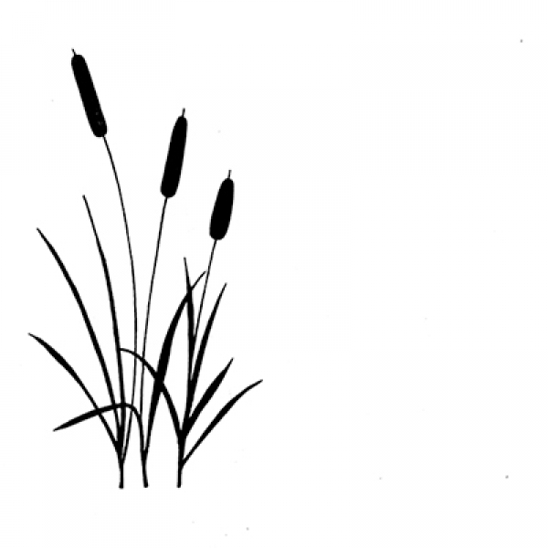 lavinia-clear-stamp-bulrushes