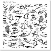 Collage Of Birds - Clear Stamps - Picket Fence Studios