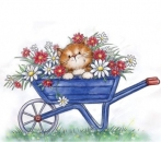 Cat in Wheelbarrow - Stempel - Wild Rose Studio
