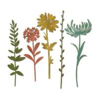 sizzix-thinlits-die-set-5pk-wildflower-stems-1