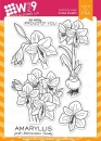 beautiful-bouqets-Amaryllis-wplus9-stempel